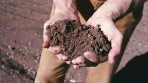 Enhance Soil Health with Fertilizer