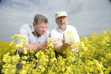 Neonicotinoids pose risk to bees, say European officials.
