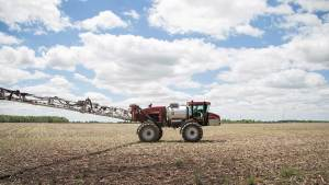 What to Expect for U.S. Dicamba Use in 2019