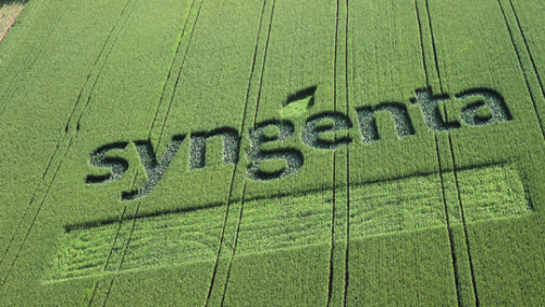 Syngenta Appoints North American Seeds Business Leaders