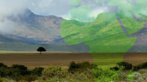 africa_greenrevolution