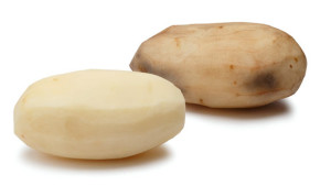 Innate potato J.R. Simplot