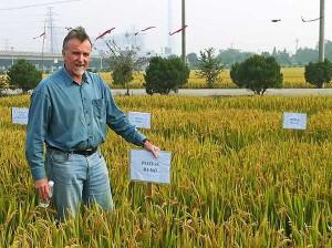 Prof. Michael McLaughlin is the laureate of the 2015 IFA Norman Borlaug Award