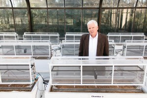 Dr Angle Greenhouse