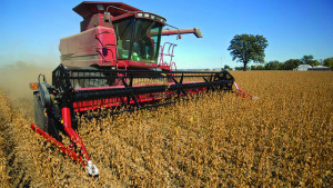Soybeans Rise on U.S.-China Trade Hopes