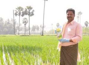 BASF Enters Indian Crop Protection Market for Rice