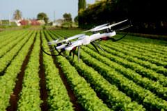 """Bayer to Market Digital Farming Under """"Xarvio"""" Brand"""