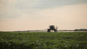 Herbicide Debates Move Into the Courtroom