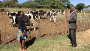 Kenya Dairy Industry Sheds Light on Market Challenges, Opportunities