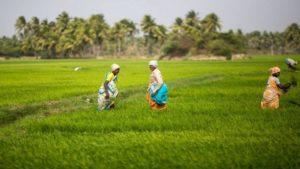India-farmers