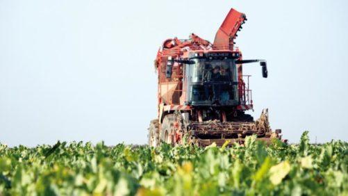 Bayer on Neonicotinoid Ban: 'A Sad Day' for European Farmers