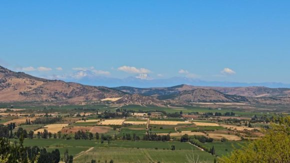Chilean-Farmland