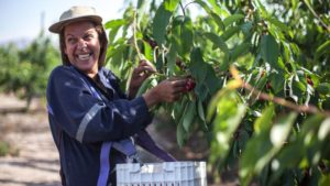 ForwardFarming: Demonstrating Sustainable Agriculture in Chile (Slideshow)