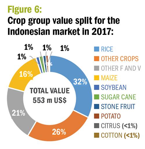 Figure 6. Crop group value split for the Indoneslan market in 2017. ©Agribusinessglobal.com