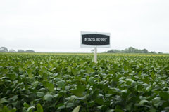 Bayer: Study Shows its Soybeans Reduce Environmental Impact