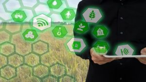 India: Enabling Modern Agriculture Through IoT