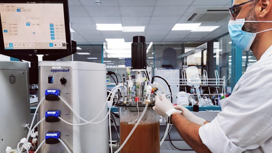 Scientist from Futureco Bioscience laboratories, preparing the inoculum of Pseudomonas putida B2017 for the bioreactor.